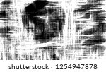 black and white grunge pattern... | Shutterstock . vector #1254947878