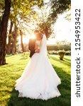 portrait of the bride and groom ... | Shutterstock . vector #1254953422