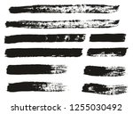 paint brush thin lines high... | Shutterstock .eps vector #1255030492