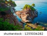 beautiful summer mediterranean...   Shutterstock . vector #1255036282