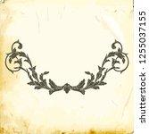 retro baroque decorations... | Shutterstock .eps vector #1255037155