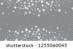 snow blizzard effect. bbright ... | Shutterstock .eps vector #1255060045