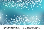 snow blizzard effect. bbright ... | Shutterstock .eps vector #1255060048