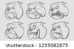 vector illustration of bulldog... | Shutterstock .eps vector #1255082875