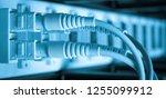 optic fiber hub as part of... | Shutterstock . vector #1255099912
