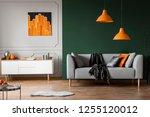 orange lamps above grey couch... | Shutterstock . vector #1255120012