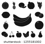 different fruits black icons in ...   Shutterstock .eps vector #1255181002