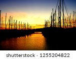 sunset at at a harbor in... | Shutterstock . vector #1255204822