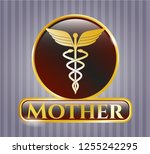 shiny emblem with caduceus... | Shutterstock .eps vector #1255242295