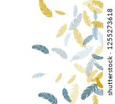 colorful silver gold feathers... | Shutterstock .eps vector #1255273618