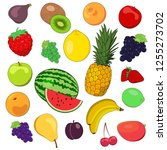 set of vector fruits. design...   Shutterstock .eps vector #1255273702