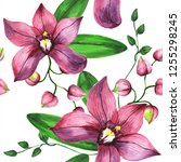 wildflower orchid flower... | Shutterstock . vector #1255298245