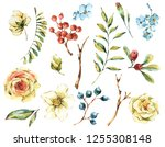 cute watercolor natural floral... | Shutterstock . vector #1255308148