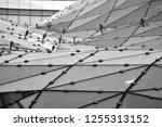 building structures aluminum... | Shutterstock . vector #1255313152