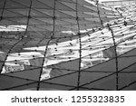 building structures aluminum... | Shutterstock . vector #1255323835