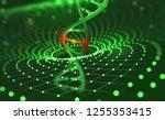 dna helix. innovative... | Shutterstock . vector #1255353415