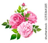 beautiful bouquet flowers of...   Shutterstock .eps vector #1255364185
