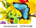 Butterfly And Group Flower....