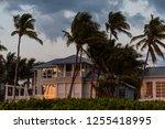 Coast House Beachfront...