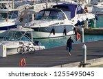 italy  sicily  mediterranean... | Shutterstock . vector #1255495045