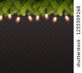 vector realistic background... | Shutterstock .eps vector #1255509268