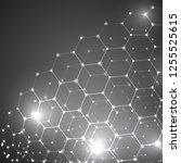 vector 3d object from a hexagon ...   Shutterstock .eps vector #1255525615