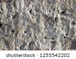 plaster wall texture... | Shutterstock . vector #1255542202