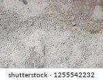 plaster wall texture... | Shutterstock . vector #1255542232