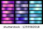 pink  purple  violet  blue ... | Shutterstock . vector #1255582018