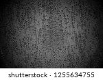 abstract background. monochrome ... | Shutterstock . vector #1255634755
