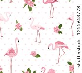 pink exotic flamingo birds ... | Shutterstock .eps vector #1255653778