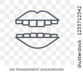 smiling mouth showing teeth... | Shutterstock .eps vector #1255712542