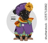 vector dog with violet hat ... | Shutterstock .eps vector #1255713082