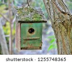 Nest Box Painted Green And...