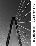arthur ravenel jr. bridge in...   Shutterstock . vector #1255754548