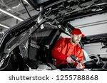 handsome auto service worker in ... | Shutterstock . vector #1255788868