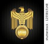 golden roman eagle vector... | Shutterstock .eps vector #1255815148