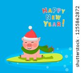 pig sits on a surfboat with red ...   Shutterstock .eps vector #1255862872