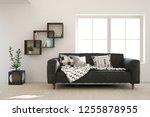 white modern room with sofa.... | Shutterstock . vector #1255878955
