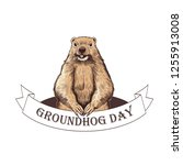 groundhog day. groundhog  on... | Shutterstock .eps vector #1255913008