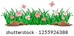 flower and grass for decor... | Shutterstock .eps vector #1255926388