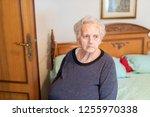 portrait of elderly lady... | Shutterstock . vector #1255970338