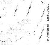 vector grunge overlay texture.... | Shutterstock .eps vector #1256064322