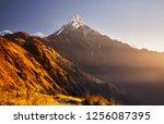 beautiful landscape of himalaya ... | Shutterstock . vector #1256087395
