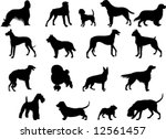 collection of vector... | Shutterstock .eps vector #12561457