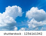 clouds of nature in a bright... | Shutterstock . vector #1256161342