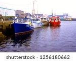 canada  nova scotia  cape... | Shutterstock . vector #1256180662