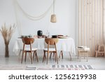 bright and white dining room... | Shutterstock . vector #1256219938