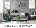 dark green blanket on... | Shutterstock . vector #1256230435