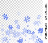 winter snowflakes border simple ... | Shutterstock .eps vector #1256268388